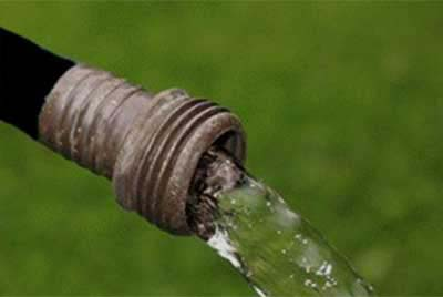 Black garden hose shown spillimg water with blurry grass background in Clarkston, MI